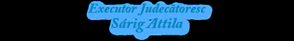 Executor judecatoresc Sarig Attila